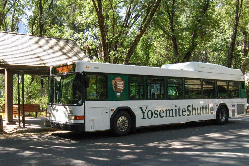 В парке есть автобусы. В зависимости от сезона они ходят с 08:00 до 17:00 или20:00