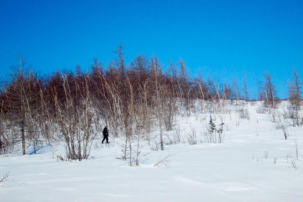 Так выглядит зимняя охота