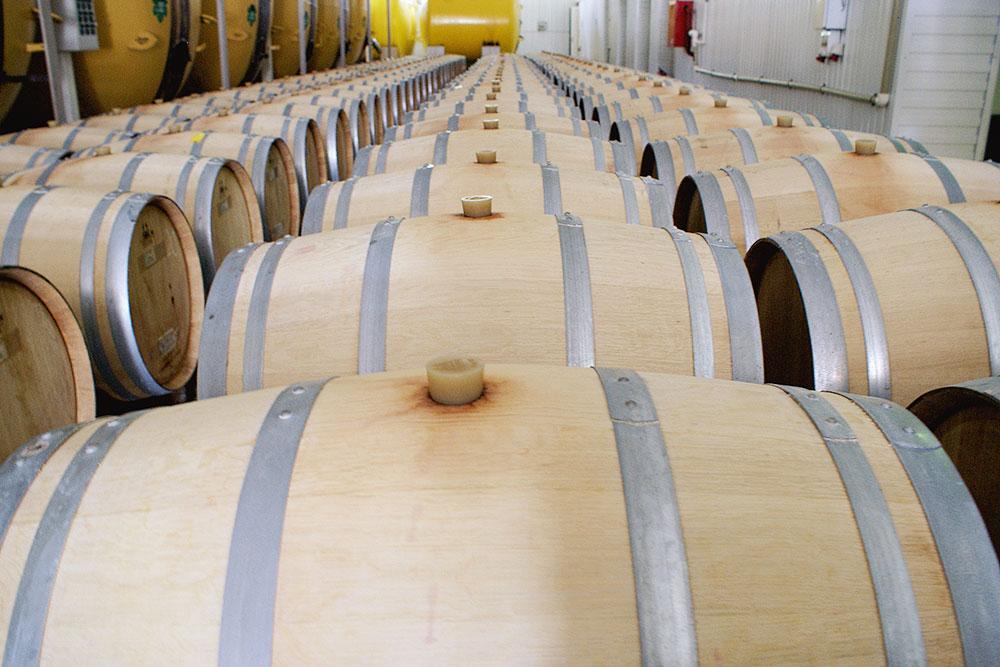 Это только часть зала выдержки. В бочках вино выдерживают от трех месяцев до нескольких лет
