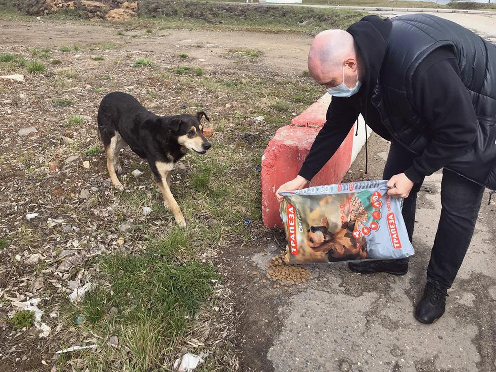 Волонтеры проекта «Накорми» ищут бездомных животных по определенным адресам: так получается накормить максимум животных, а не только тех, кто живет вблизи жилых домов