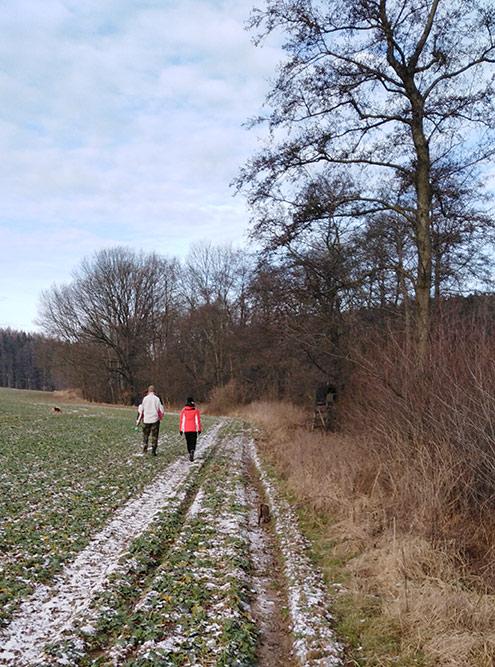Предновогодняя прогулка 30 декабря — вот, в общем-то, и весь снег