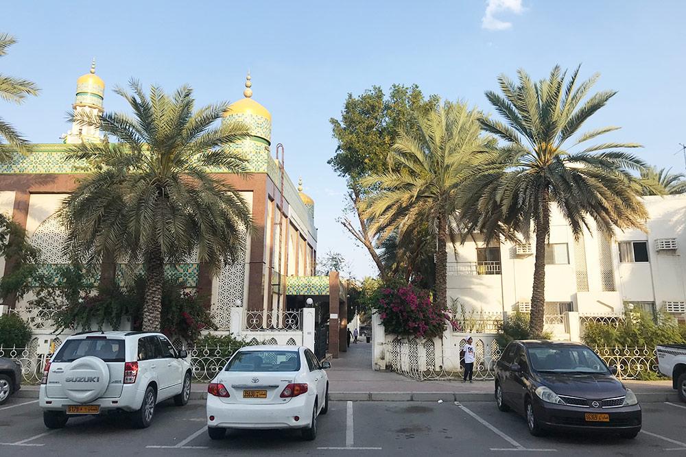 В Маскате растет много финиковых пальм, поэтому город кажется очень зеленым