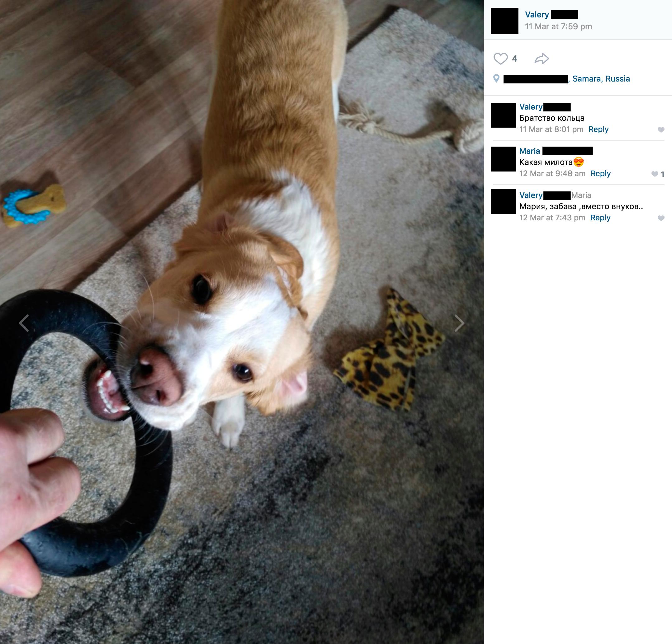 Преступники будут знать, что проникнуть в квартиру безопаснее, когда хозяин выводит собаку на прогулку