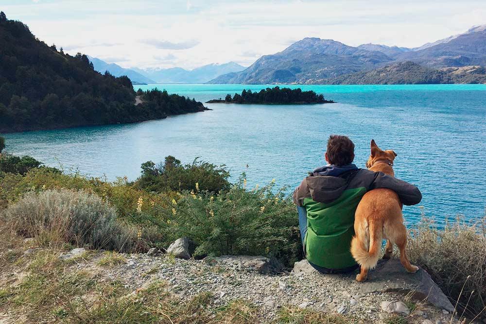Любуюсь видом на озеро Хенераль-Каррера с четвероногим попутчиком. Собак на всей территории Чили огромное количество, как домашних, так и уличных, но все ведут себя дружелюбно