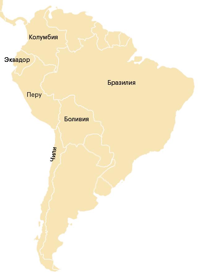 Перу — страна в Южной Америке. Она находится в восточной части материка и граничит с Бразилией, Чили, Эквадором, Колумбией и Боливией