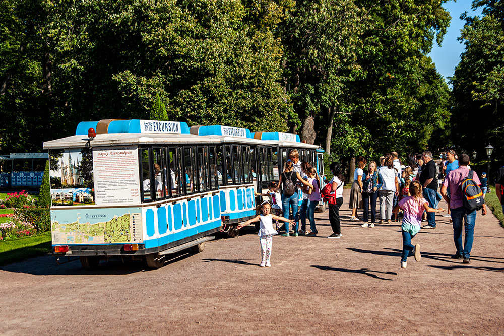 Экскурсионный автопоезд следует в&nbsp;Александрию и&nbsp;обратно. За&nbsp;получасовую поездку взрослому придется отдать 450&nbsp;<span class=ruble>Р</span>. В&nbsp;стоимость входит билет в&nbsp;парк