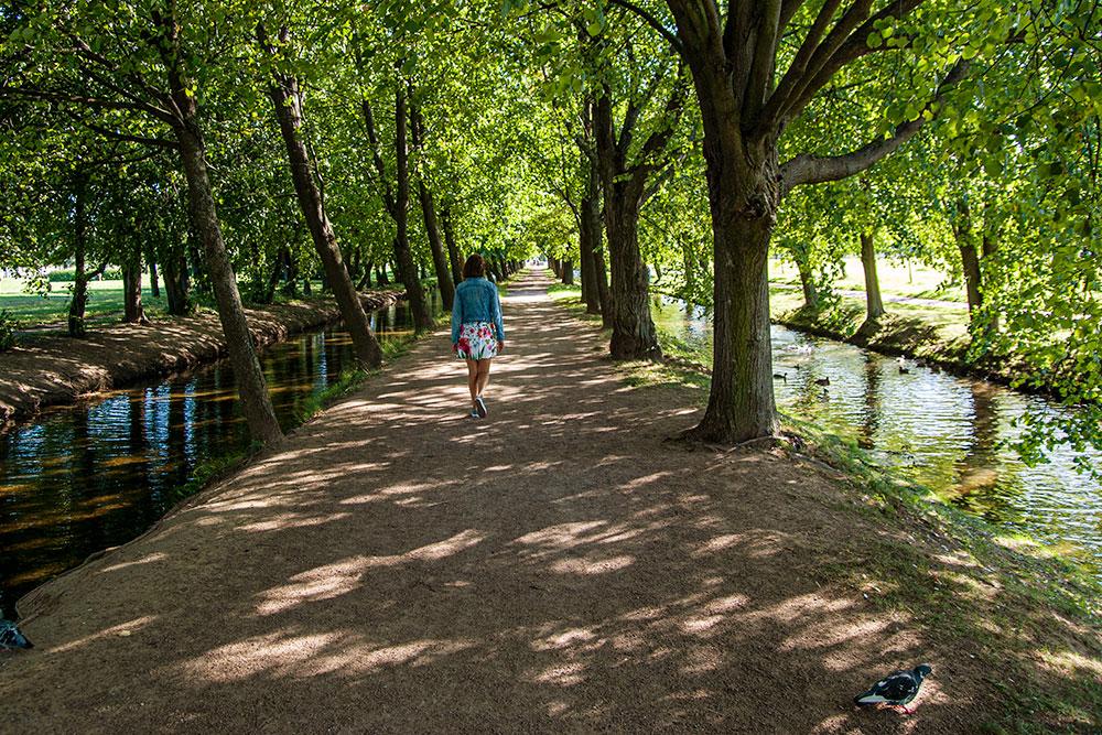 Каналы ипруды парка популярны уфотографов, здесь часто устраивают фотосессии