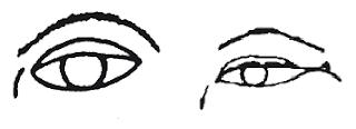 Форма бровей и глаза богача