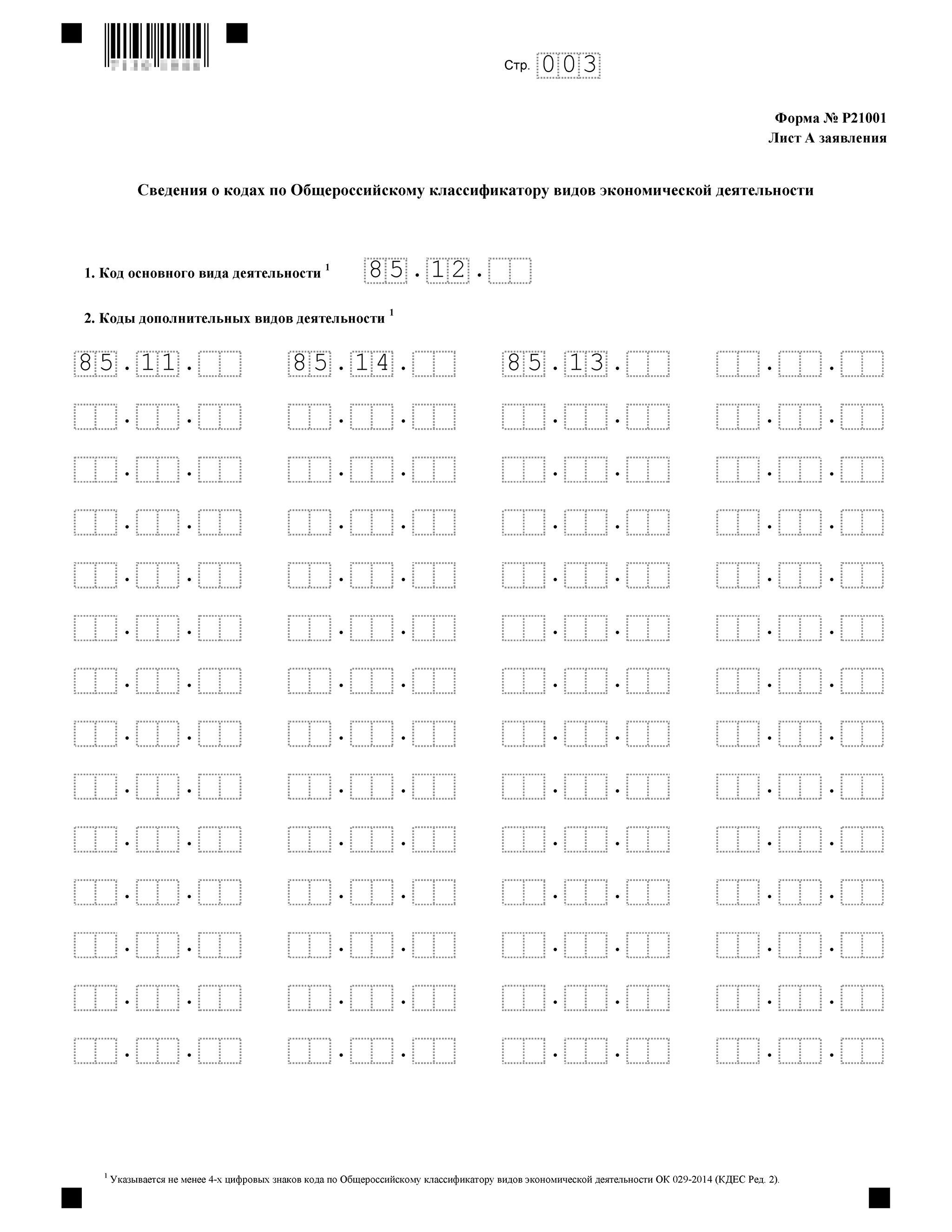 Третья страница заявления на регистрацию ИП — заполнение основных и дополнительных кодов ОКВЭД
