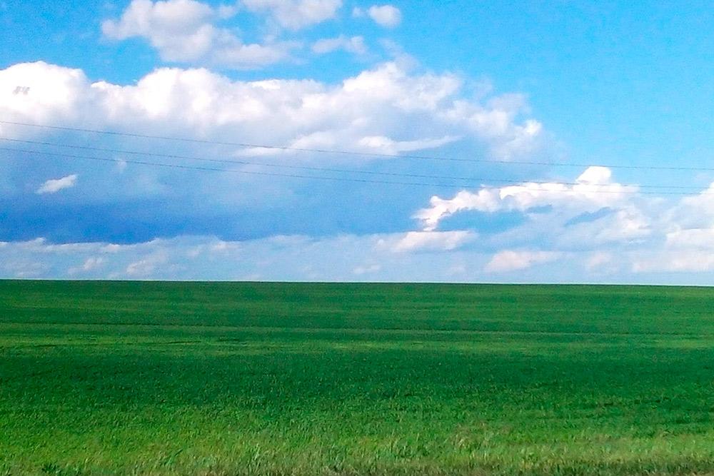 Фото для заставки Windows XP явно снимали где-то в Марий Эл