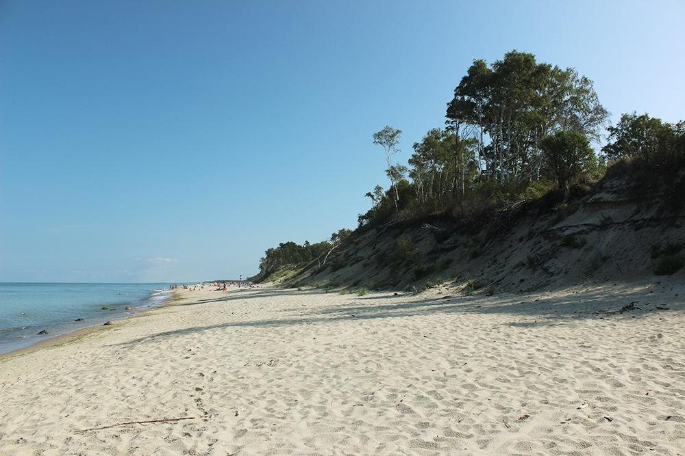 Пляж на Куршской косе. Берег широкий с чистым и белым песком