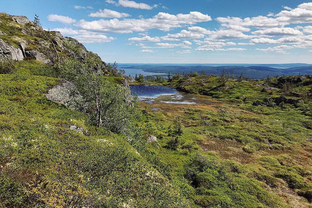 Болота на вершинах гор образуются из-за подземных вод, которые в этих местах выходят наповерхность