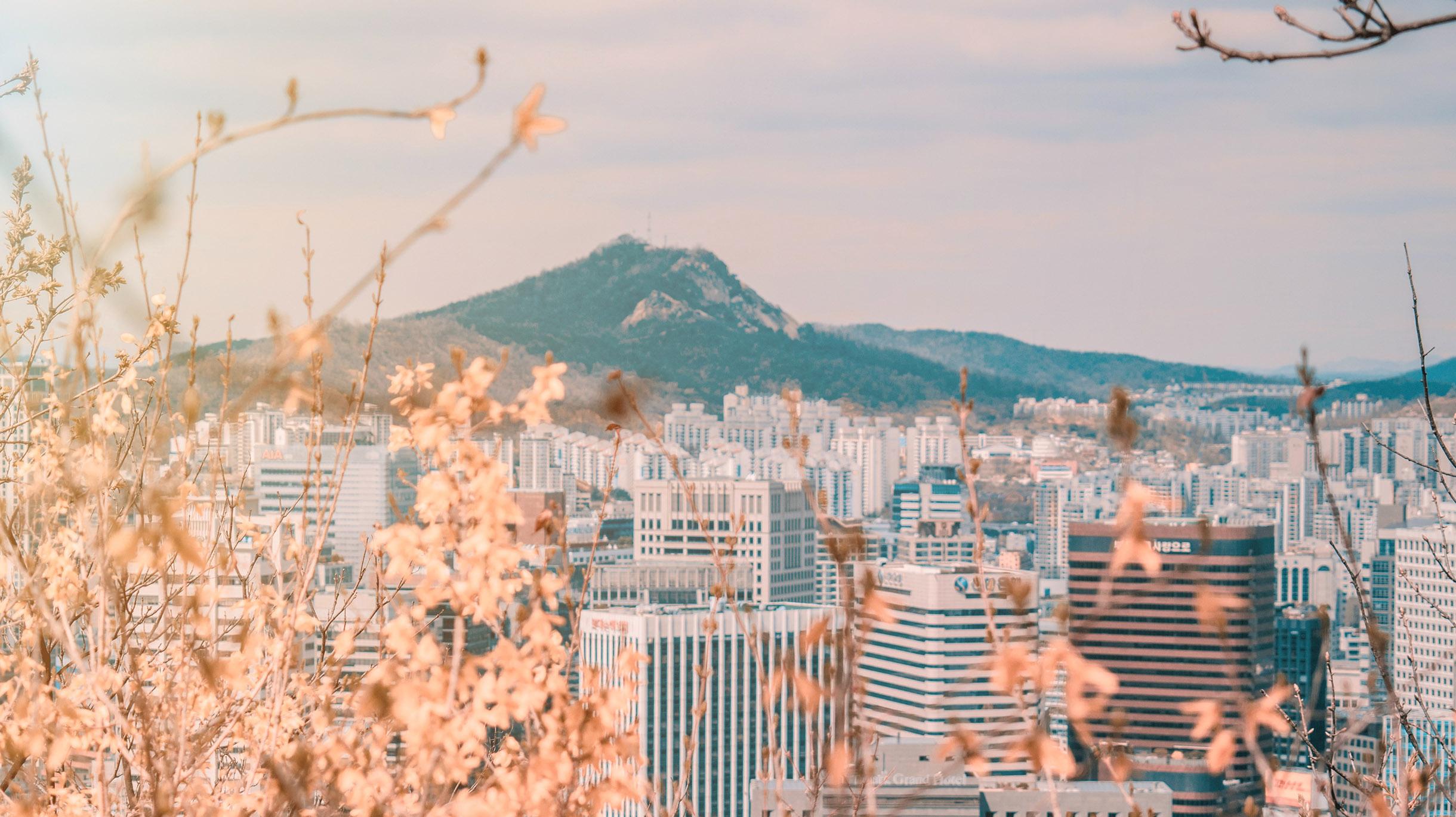 Что посмотреть в Сеуле за один день