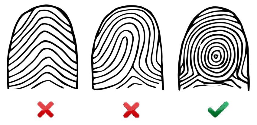 Типы папиллярных узоров пальцев рук картинки использовать для