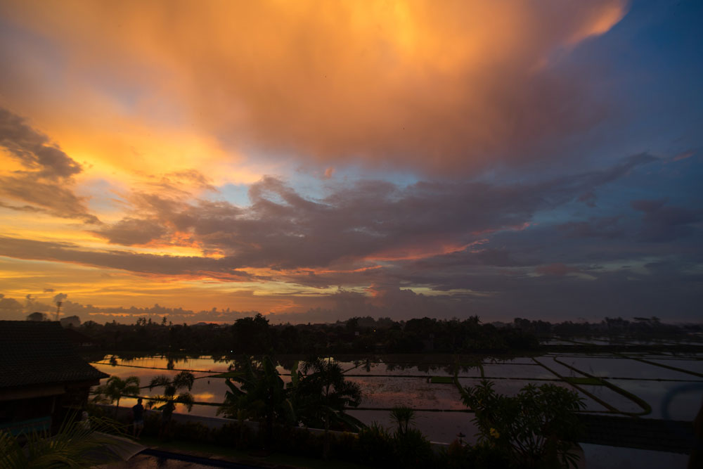 В центре острова потрясающие рисовые поля