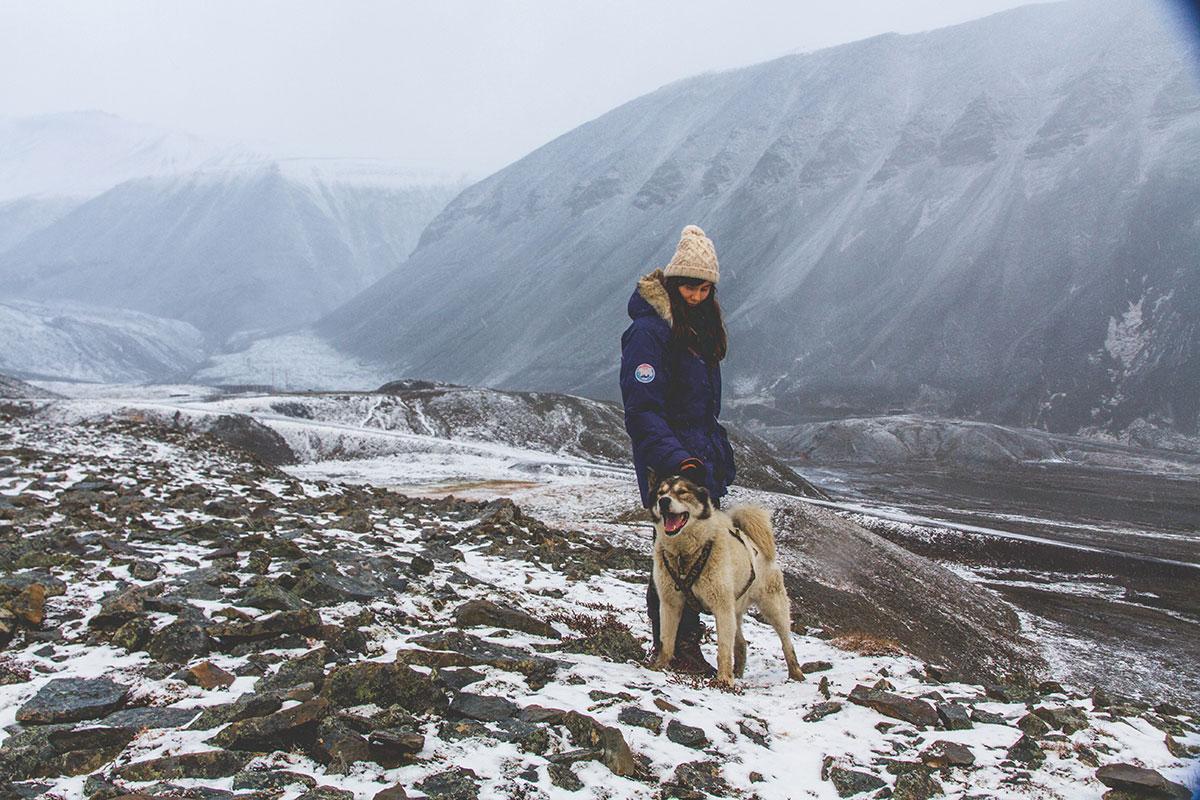 Сентябрь 2016 года. На прогулке с псом в 200 метрах от города