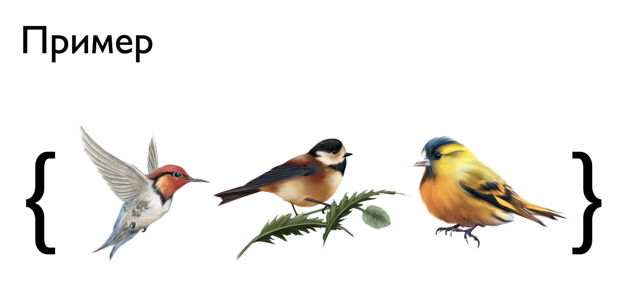 Когда я рассказывал, как оформлять элементы множеств, вместо чисел показывал на слайде птиц