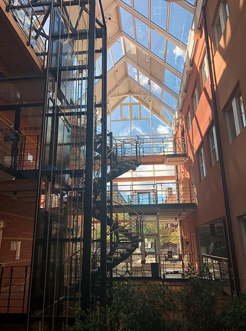 Внутри учебных корпусов очень уютно благодаря большому объему открытого пространства и солнечного света. Ощущение чего-то родного и домашнего не отпускало меня ни на минуту. Каждый день я радовалась тому, что могу посещать такой университет