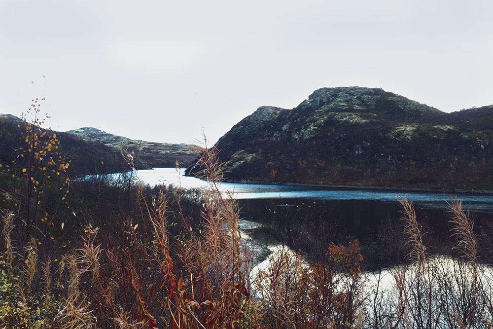 Осенние краски северной природы