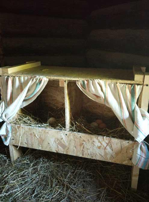Побаловались и сделали новые гнезда длякур сошторками, как вмультике проПетсона и Финдуса. Еще мне очень хочется сделать табличку надверь «Свежие яйца», нопока недотого