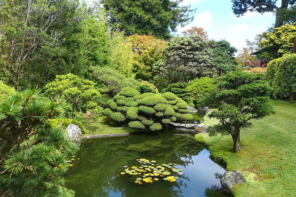 Japanese Tea Garden в Сан-Франциско. Сад небольшой, но очень красивый. Входной билет стоил 9$