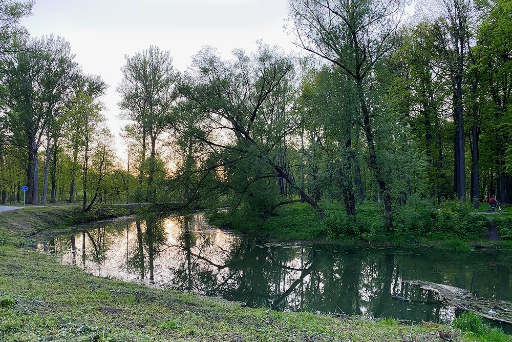 В детстве я жила вдругом районе. Рядом был загадочный «Баташевский сад» — просто лесной массив, где повыходным туляки любили жарить сосиски и мясо. Сад был заросшим, диким, и детей туда так просто гулять неотпускали. Теперь его обустроили: сделали аллеи, велосипедные дорожки, поставили лавочки. Сейчас это настоящий парк наберегах реки
