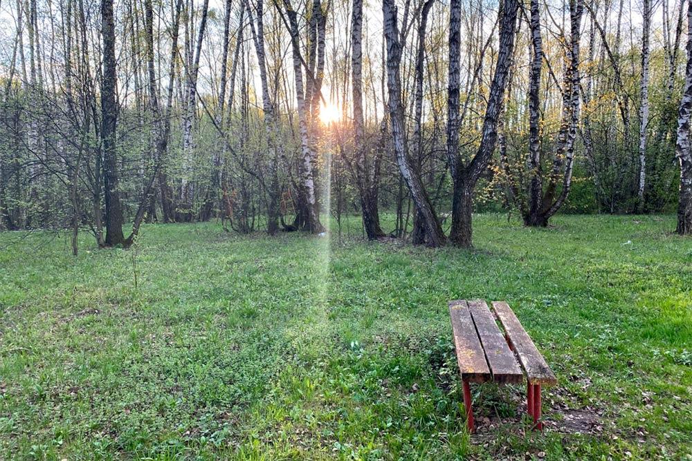 В Хомякове есть потайные места славочками. А рядом — большой пруд