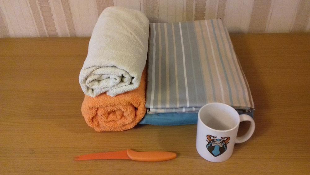 Бытовые вещи, которые мы взяли с собой: комплект постельного белья, два полотенца, нож и кружка — одна на двоих