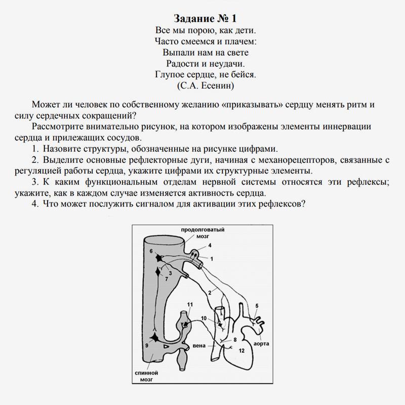Задание по психологии дляучеников 10—11 классов