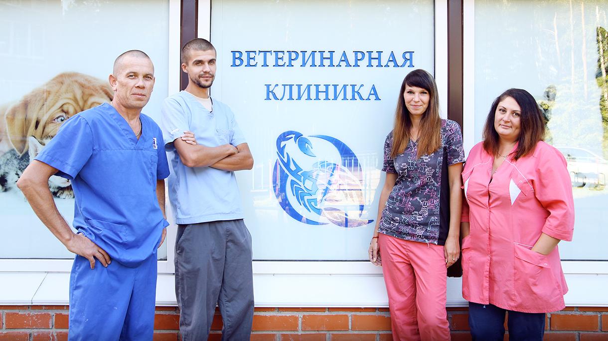 Бизнес: ветеринарная клиника в Подмосковье