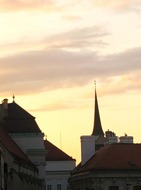 Вид с обзорной площадки Альбертины. В Вене за каждым поворотом встречает новый дворец, сказочный дом или барочная церковь