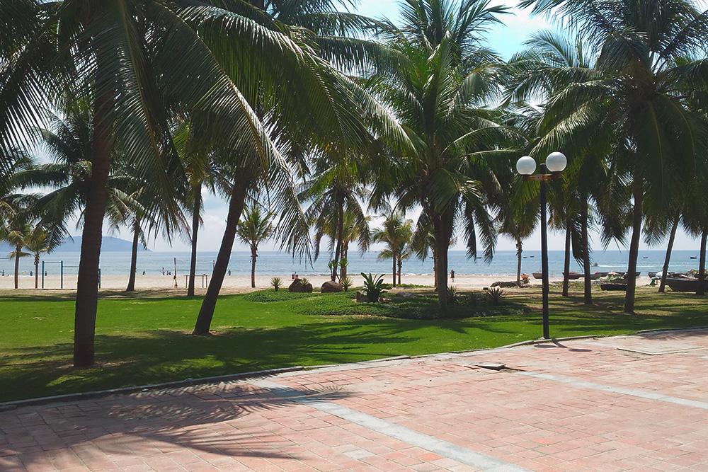 Зеленая зона на набережной Дананга