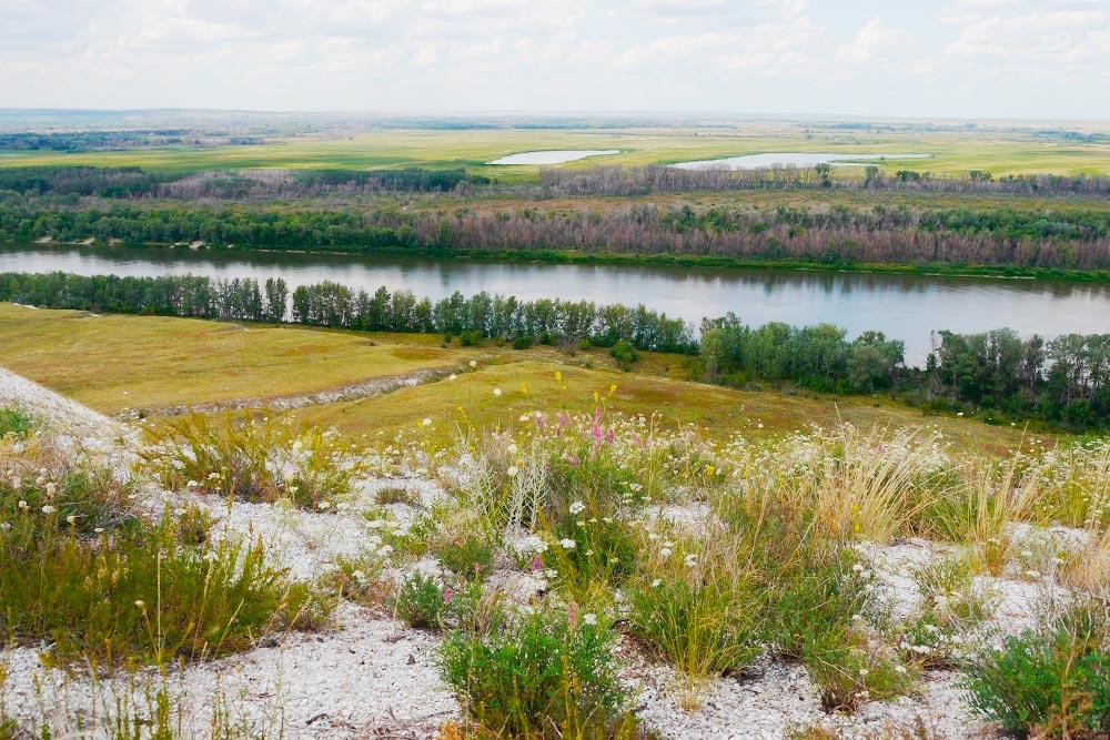 Донской природный парк в Иловлинском районе Волгоградской области. Фото Дарьи Чирковой