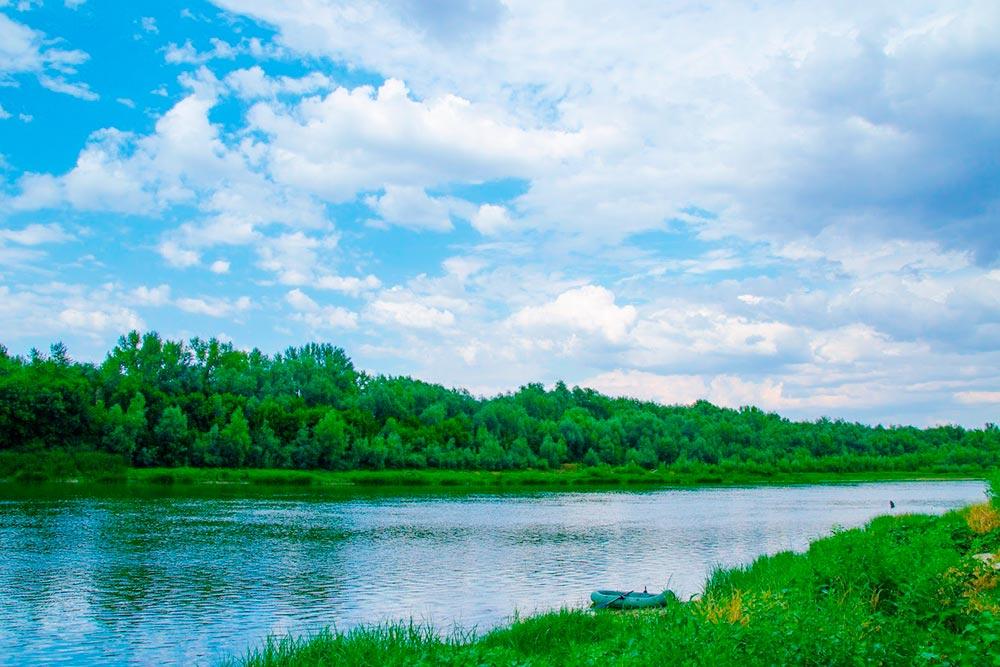 Мы с друзьями чаще всего выбираемся на берег Дона в Калачевский район Волгоградской области. На автомобиле дорога туда занимает 1—2 часа