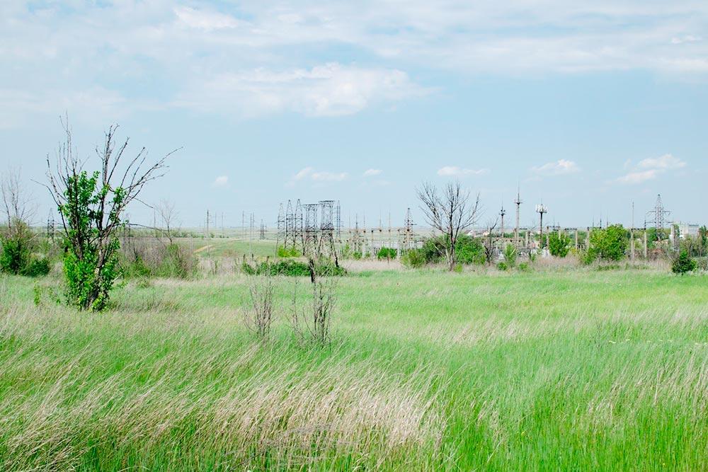 Вот так выглядят волгоградские степи весной. К лету все желтеет и засыхает