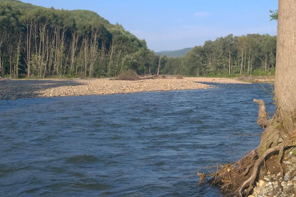 Река Шкотовка, где я искал (и нашел) золото. Такие горные реки часто приходится переходить вброд, а иногда переплывать