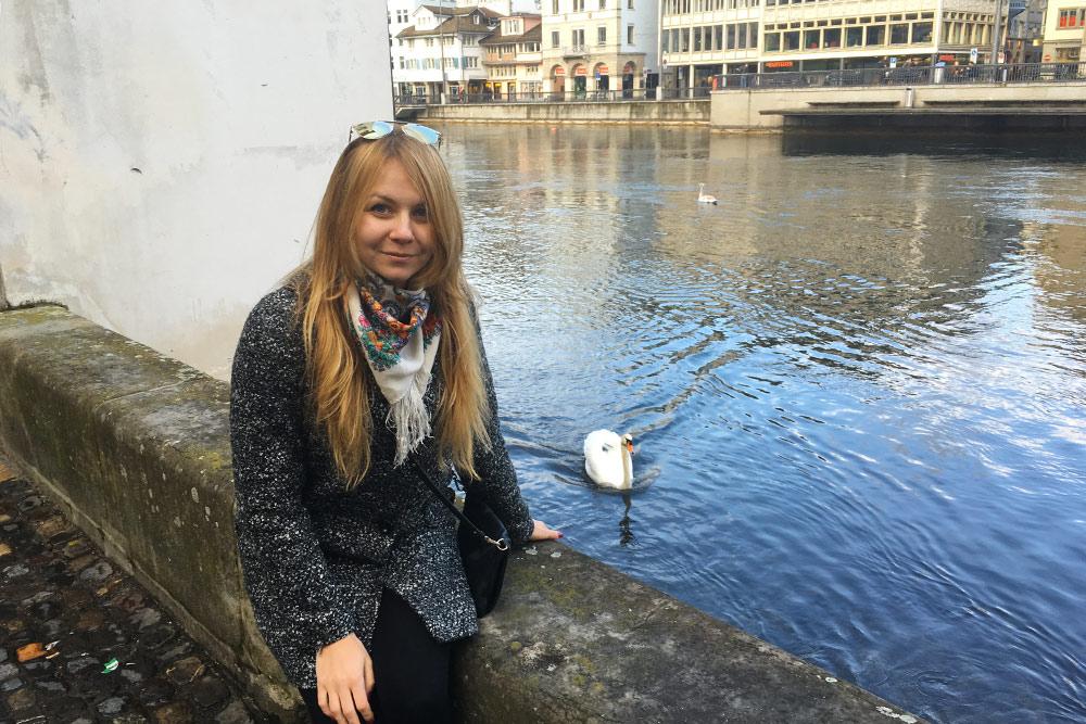 Лебеди плавают прямо в центре города